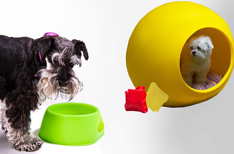 Arquipets folding dog bowl and dog bubble