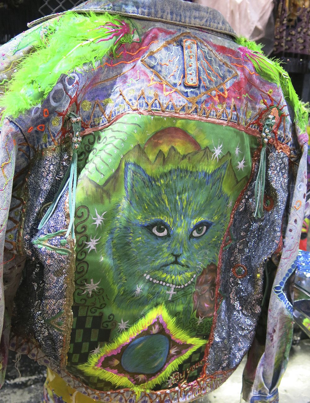 Hand painted cat jacket