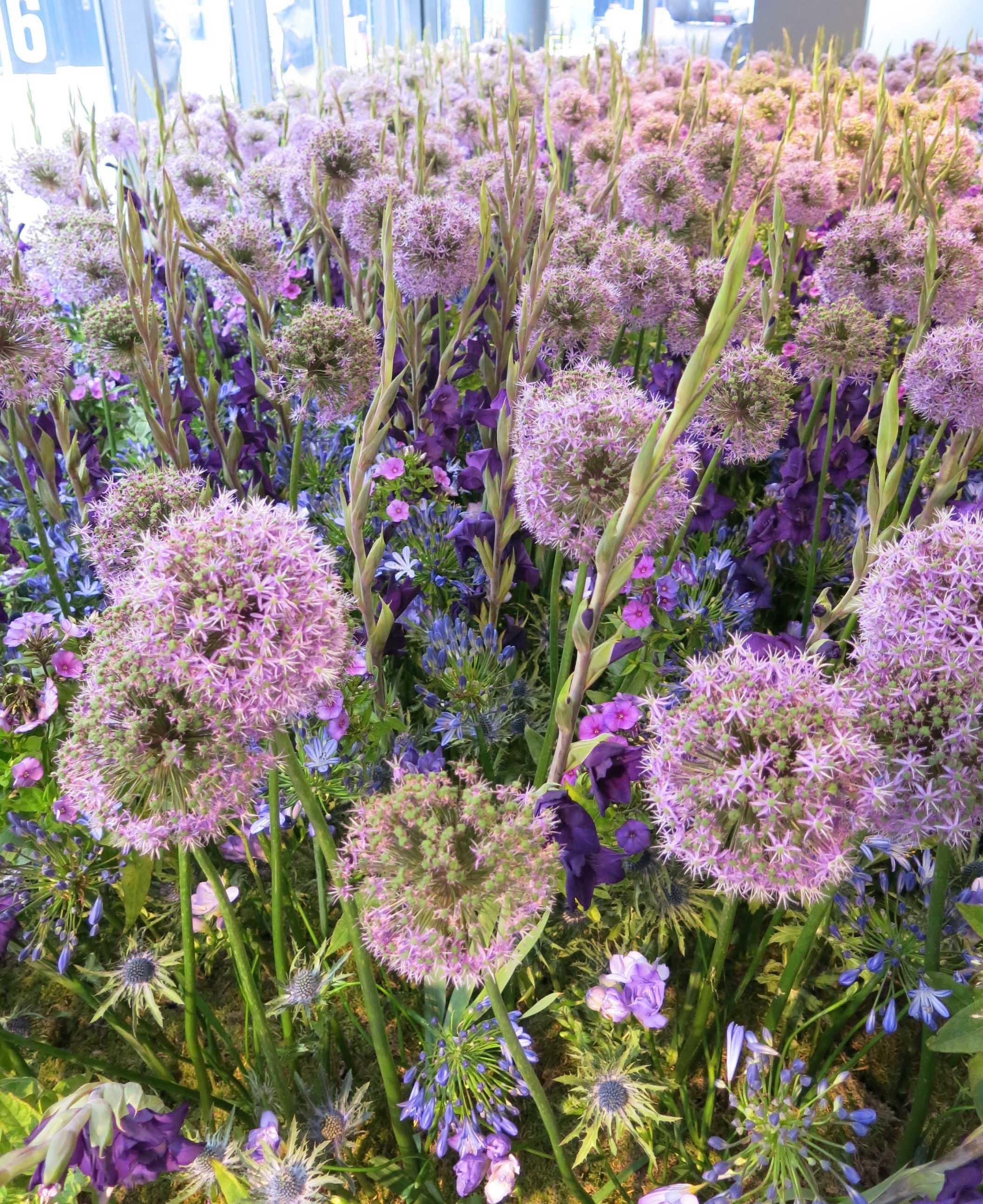 CDW fringe flowers